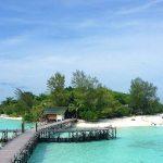 15+ Cose da vedere e fare a Sandakan – Malesia